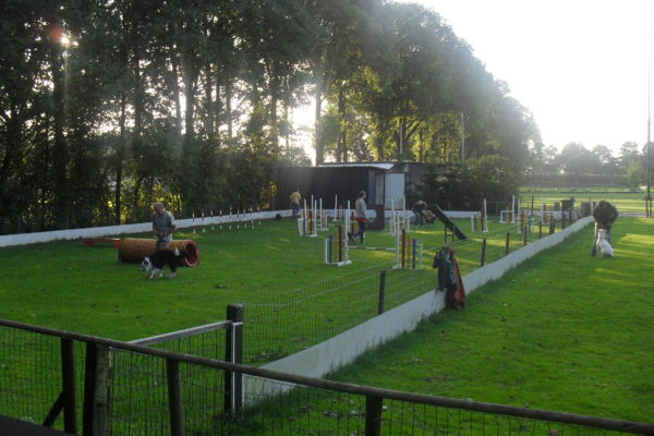 https://geduldoverwinttilburg.nl/wp-content/uploads/2019/06/behendigheid1877-600x400.jpg